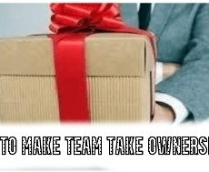 How to Make Team Take Ownership