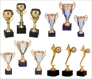 Customized Mementos and Trophies